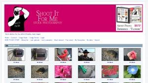Stock Photography Website Design